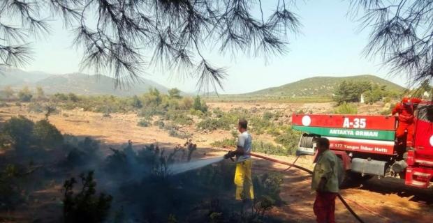 Kahramanmaraş'ta orman yangınları