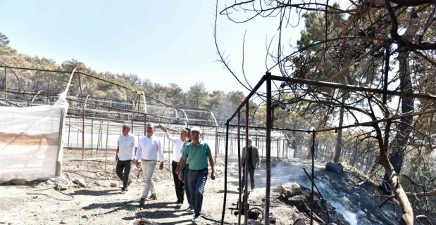 Başkan Uysal yangın çıkan bölgede inceleme yaptı