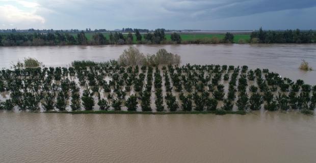 Adana'da nehir taştı