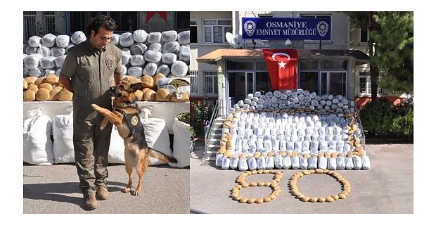 Osmaniye'deki uyuşturucu operasyonu
