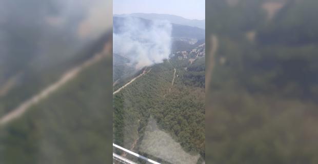 Adana'da orman yangını