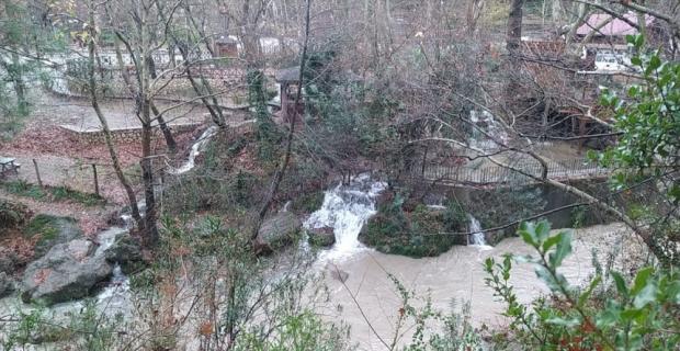 Adana'da yağmur üreticinin yüzünü güldürdü