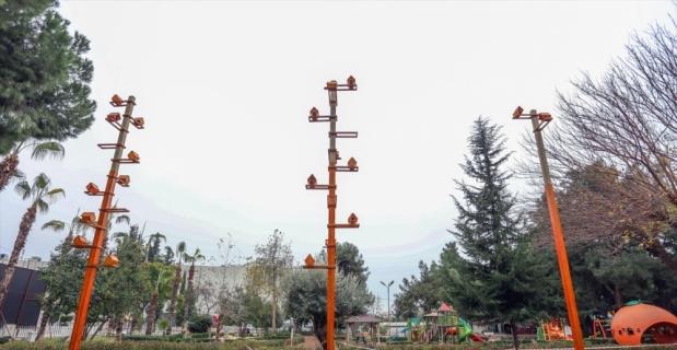 Kepez'de parklara kuş evleri yerleştiriliyor
