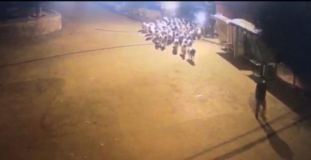 Mersin'de 100 koyun çaldıkları iddia edilen 2 kişi tutuklandı