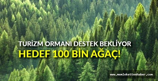 """Hatay'da kurulacak """"turizm ormanı"""" için hedef 100 bin ağaç olarak belirlendi"""