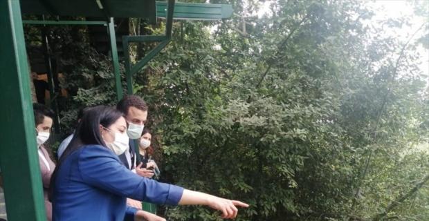 Harbiye Şelalesi'nde rehabilitasyon çalışmaları başlıyor
