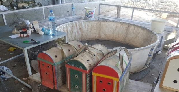 Hatay'da horoz dövüştüren 6 kişiye para cezası