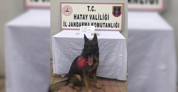 Hatay'da uyuşturucu operasyonunda yakalanan şüpheli tutuklandı
