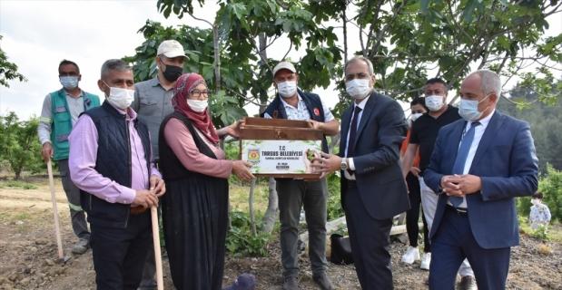 Tarsus Belediyesi'nin üreticilere yönelik yerli tohum desteği devam ediyor