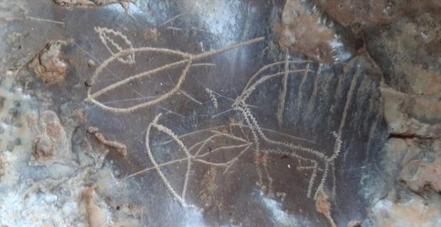 Mersin'de duvarında hayvan figürleri olan mağaranın korunması için başvuru yapılacak