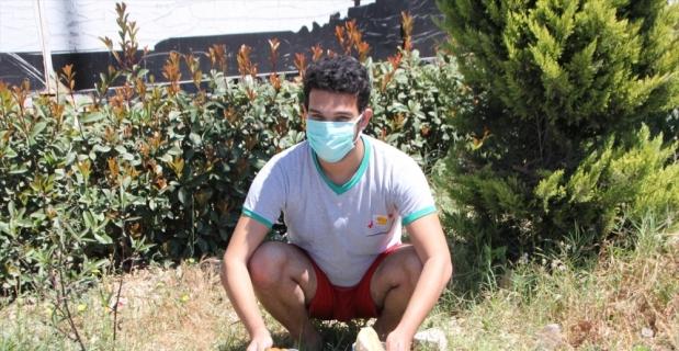 Serik'te bir genç, harçlığını sokak hayvanları için harcıyor