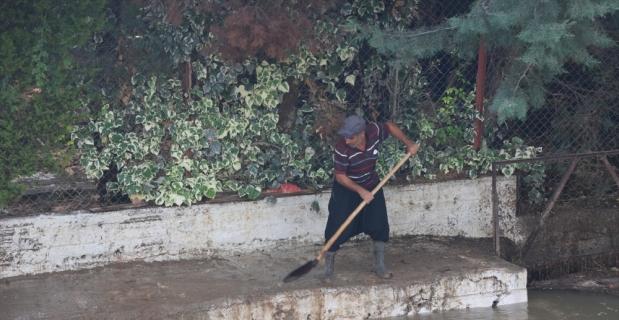 Adana'da sağanak nedeniyle zarar gören tarım alanlarında hasar tespiti yapılıyor