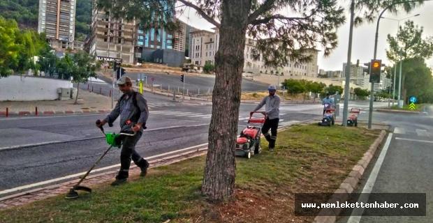 Kahramanmaraş'ta Yeşil Alanlarda Bakım Çalışması