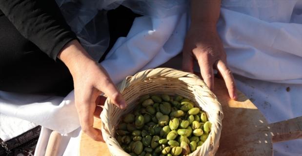 5. Altınözü Zeytin, Zeytinyağı ve Gastronomi Festivali başladı