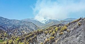 Hatay'daki yangın alanı havadan görüntülendi