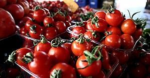 Rusya'nın Türkiye'den domates ithalatında kotayı artırma kararı, sektör temsilcilerinin yüzünü güldürdü