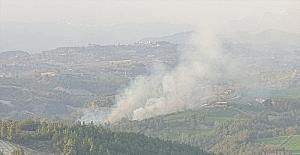 Osmaniye'de ormanlık alanda çıkan yangın söndürüldü