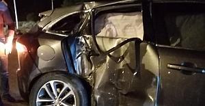 Adana'da elektrik direğine çarpan otomobildeki 2 kişi yaralandı