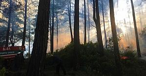 Burdur'da kızılçam ormanında çıkan yangın kontrol altına alındı