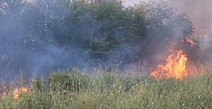 Adana'da çalılık alanda çıkan yangın söndürüldü