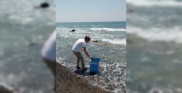 Hatay sahil şeridinde görülen sıvının ilk belirlemelere göre müsilaj olmadığı bildirildi