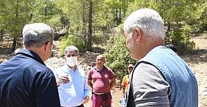 İçişleri Bakan Yardımcısı İnce, Mersin Aydıncık'taki yangında zarar gören alanlarda incelemede bulundu