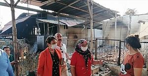 CHP Milletvekili Şevkin, Kozan'da yanan orman bölgesinde incelemede bulundu