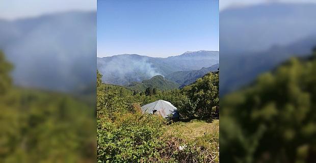 Amanos Dağları'ndaki örtü yangınına müdahale ediliyor