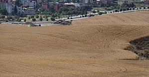 Çukurovalı çiftçiler Cumhurbaşkanı Erdoğan'ın açıkladığı desteklerden memnun