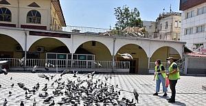 Tarsus Belediyesinden sokak hayvanlarına mama desteği