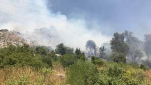 GÜNCELLEME - Antalya'da zeytinlik ve makilik alanda çıkan yangın kontrol altına alındı